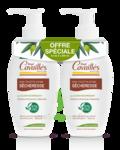 Acheter Rogé Cavaillès Hygiène intime Soin naturel Toilette Intime Sécheresse 2Fl/250ml à Andernos