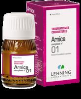 Lehning Arnica Complexe N° 1 Solution Buvable En Gouttes Fl/30ml à Andernos