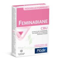 Pileje Feminabiane Cbu 30 Comprimés Bicouches à Andernos