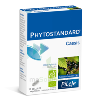 Pileje Phytostandard - Cassis 20 Gélules Végétales à Andernos