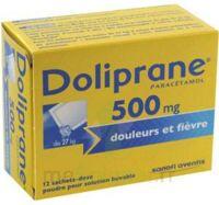 Doliprane 500 Mg Poudre Pour Solution Buvable En Sachet-dose B/12 à Andernos
