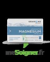Granions De Magnesium 3,82 Mg/2 Ml S Buv 30amp/2ml à Andernos