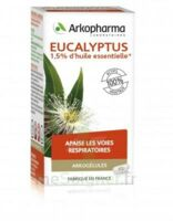 Arkogélules Eucalyptus Gélules Fl/45 à Andernos