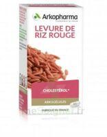Arkogélules Levure De Riz Rouge Gélules Fl/45 à Andernos