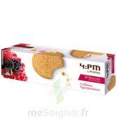 Biscuits Fruits Rouges *20 à Andernos