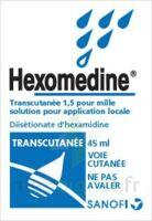 Hexomedine Transcutanee 1,5 Pour Mille, Solution Pour Application Locale à Andernos