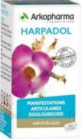 Arkogelules Harpagophyton Gélules Fl/150 à Andernos