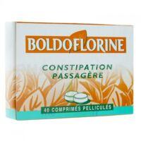 Boldoflorine 1 Cpr Pell Constipation Passagère B/40 à Andernos