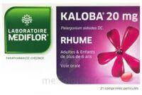 Kaloba 20 Mg Comprimé Pelliculé Plq/21 à Andernos