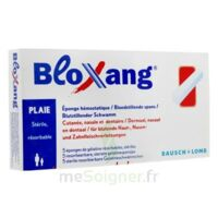Bloxang Eponge De Gélatine Stérile Hémostatique B/5 à Andernos