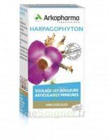 Arkogelules Harpagophyton Gélules Fl/45 à Andernos