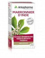 Arkogelules Marronnier D'inde Gélules Fl/45 à Andernos