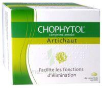 Chophytol Cpr Enr 6plaq/30 à Andernos
