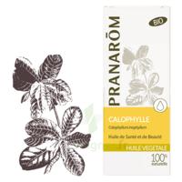 Pranarom Huile Végétale Bio Calophylle 50ml à Andernos