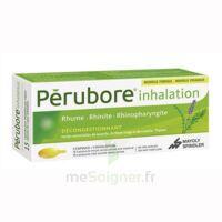 Perubore Caps Inhalation Par Vapeur Inhalation Plq/15 à Andernos