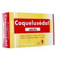 Coquelusedal Adultes, Suppositoire à Andernos