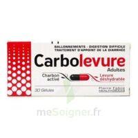 Carbolevure Gélules Adulte Plq/30 à Andernos