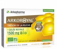 Arkoroyal Gelée Royale Bio 1500 Mg Solution Buvable 20 Ampoules/10ml à Andernos