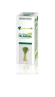Huile Essentielle Bio Palmarosa à Andernos