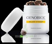 Oenobiol Solaire Intensif Caps Peau Normale Pot/30 à Andernos