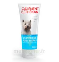 Clément Thékan Shampooing Poils Blancs T/200ml à Andernos