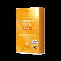Terracotta Cocktail Solaire Comprimés B/30 à Andernos