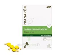 Aromaforce Caps Inhalation Bio B/15 à Andernos