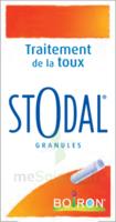 Boiron Stodal Granules Tubes/2 à Andernos
