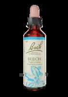 Fleurs De Bach® Original Beech - 20 Ml à Andernos