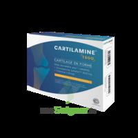 Cartilamine 1500mg Tablettes Articulations B/30 à Andernos