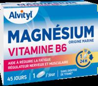 Govital Magnésium Vitamine B6 Comprimés B/45 à Andernos