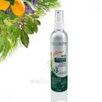 Naturactive Assaini'spray 200ml à Andernos