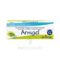 Boiron Arnigel Gel T(alumino-plastique)/45g à Andernos