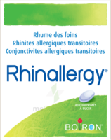 Boiron Rhinallergy Comprimés B/40 à Andernos