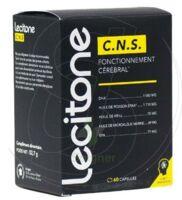 Lecitone C.n.s Caps B/60 à Andernos
