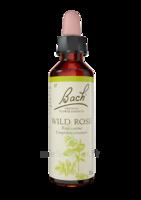 Fleurs De Bach® Original Wild Rose - 20 Ml à Andernos