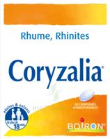 Boiron Coryzalia Comprimés Orodispersibles à Andernos