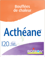 Boiron Acthéane Comprimés B/120 à Andernos